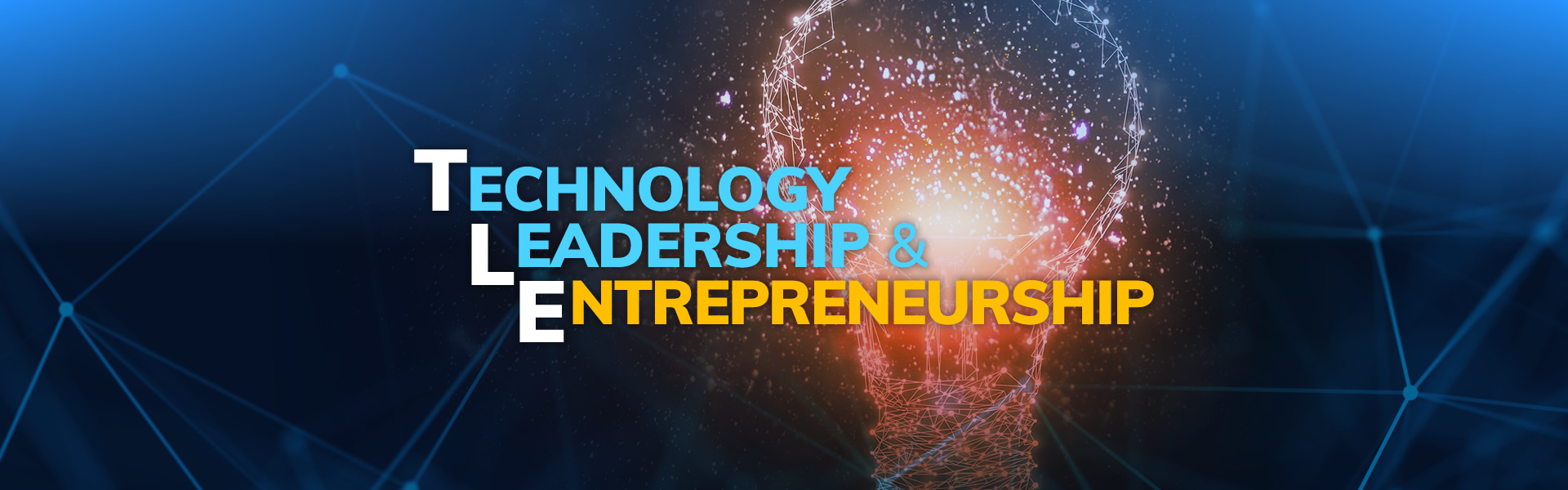 Technology Leadership and Entrepreneurship