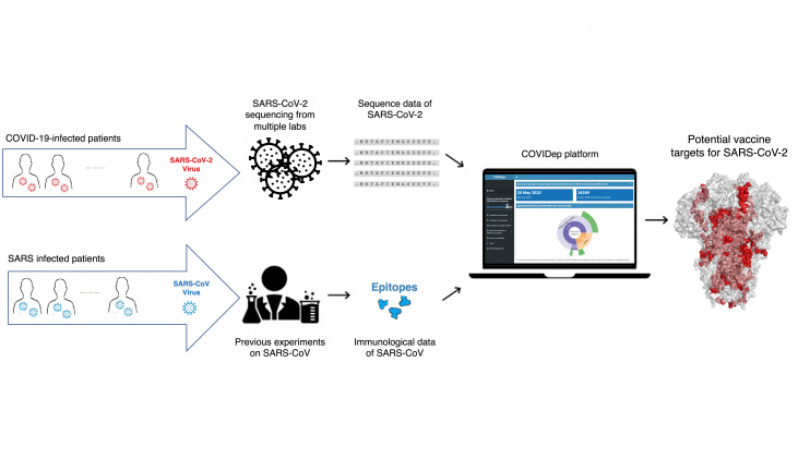 HKUST Sets Up a Platform for Real-time Reporting of Vaccine Target Recommendations for COVID-19